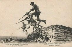 A Grande Guerra, a Maia e os Maiatos