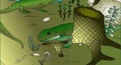 A Floresta Tropical do Pejão de há 300 Milhões de Anos