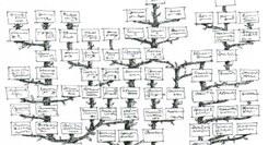 Curso Livre de Genealogia