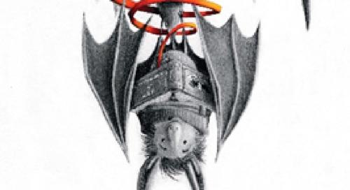 O Morcego Bibliotecário