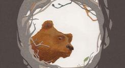 O segredo do Avô Urso