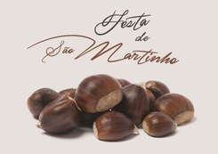 S. Martinho Musical