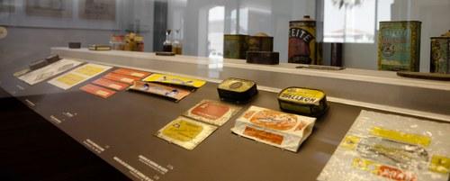Visitas Guiadas às Exposições Permanentes Mais Atividade